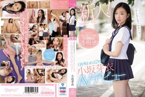 "[CAWD-028] ""Please Don't Look At Me Like That…"" For 7 Seconds, I Was Blinded By Her Brilliance Mei Kosaka (1080p)"