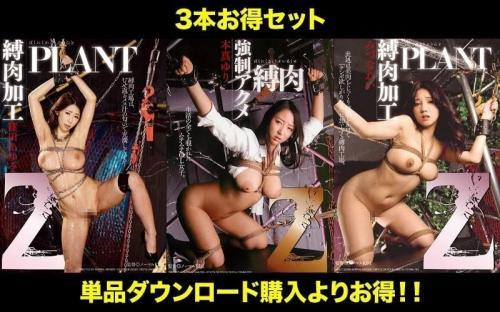 [STDDT-076] (Special Set) Jerk Off Collection! Z Bondage Series Yuri Honma Ayumi Shinoda Rei Mizuna