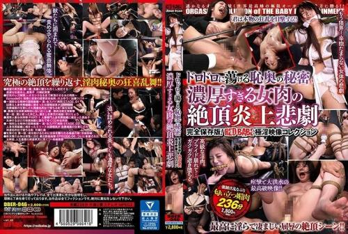 [DBER-046] The Secret That Hides Deep In Her Heart, Thawed Out With Filthy, Dripping Lust The Orgasmic And Passionately Tragic Ecstasy Of An Excessively Deep And Rich Flesh Fantasy Woman Complete Collector's Edition! RED BABE An Exquisitely Lustful Video Collection