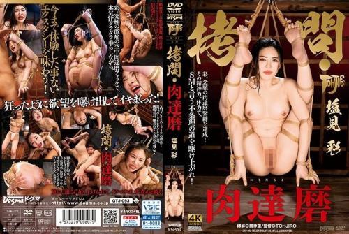 [GTJ-093] Rough Play/Meat Ball Aya Shiomi