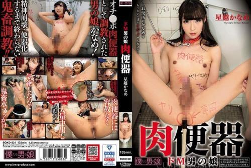 [BOKD-231] A Super Masochistic Tranny Meat Toilet – Kaname Hoshino